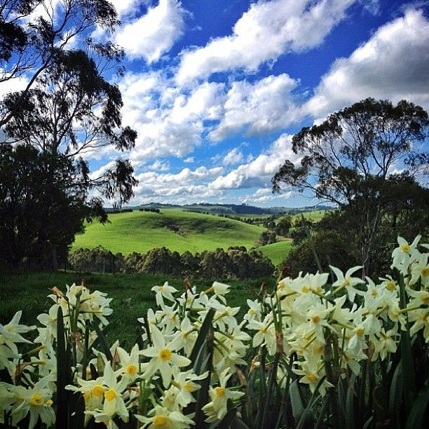 South Gippsland in Gippsland (Victoria, Australia)