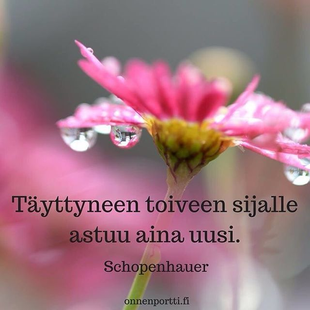 Täyttyneen toiveen sijalle astuu aina uusi. Schopenhauer #aforismi #toive #unelma #onnenportti