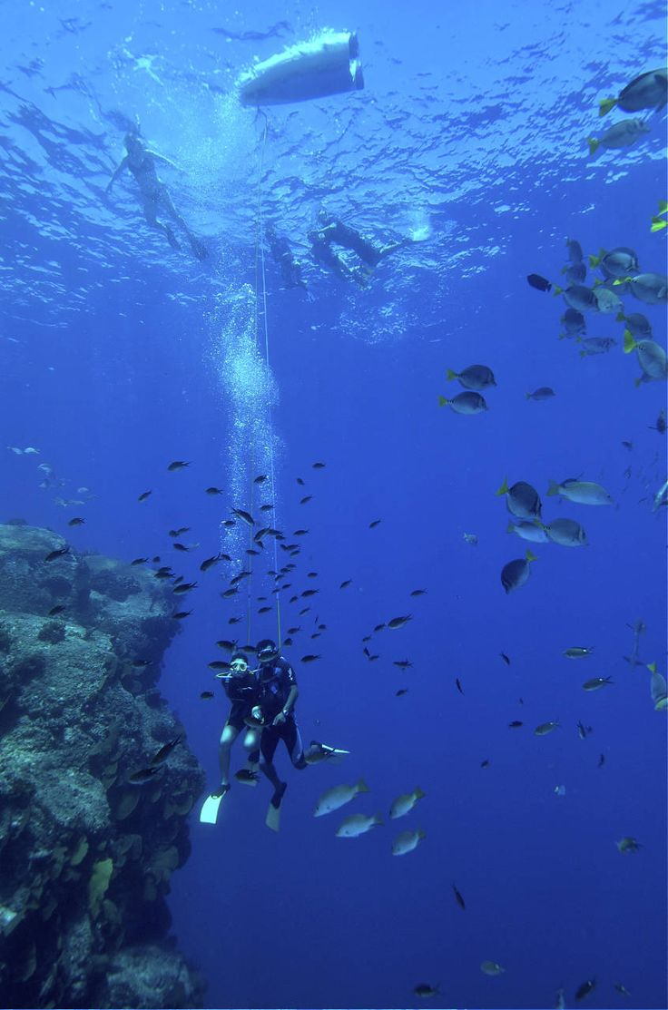 Caribbean Diving Options: Snorkel, Scuba, Snuba, Sea Trek and Submarines