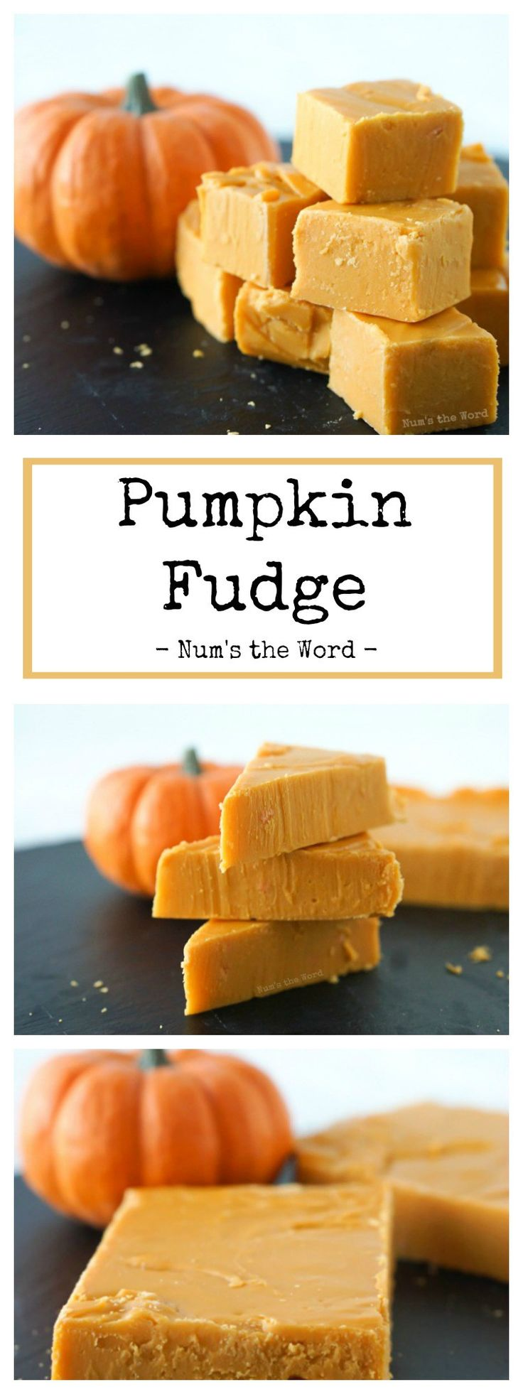 This Pumpkin Fudge Recipe takes 15 minutes to make and an hour to chill before you can sink your teeth into it. Everyone who tries it raves about how creamy and smooth the texture is and asks for the recipe! #fudge #homemadefudge #creamyfudge #pumpkin #pumpkinspice #pumpkinfudge #pumpkinspicefudge #autumn #gift #numstheword #dessert #recipe