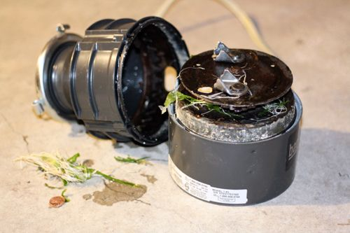 Garbage Disposal Do's and Don'ts