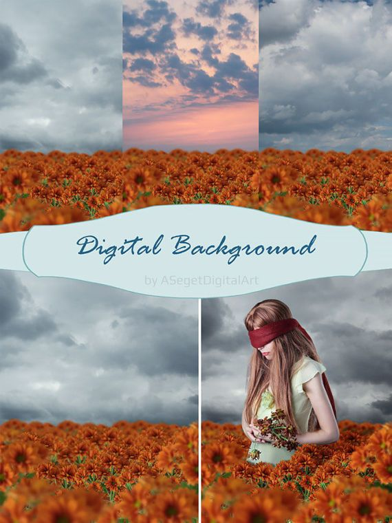 Digital Background, Photo Overlays,  Photo Background,Flowers, PNG,JPEG, Digital Overlay
