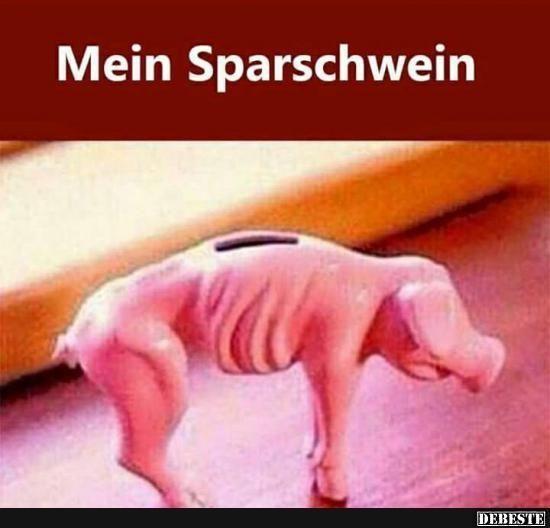 Ist das nicht mal ein geiler pic..... what a poor pig
