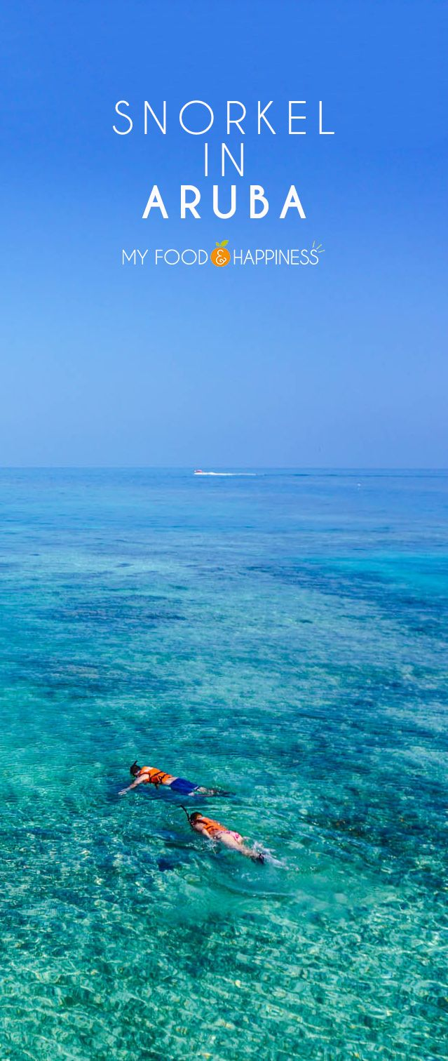 The ultimate paradise experience! Would you like to snorkel in the Caribbean sea next to a paradise beach in Aruba? Discover all the adventurous couple activities you can do in Aruba! travel   adventure   paradise beach   snorkelling  