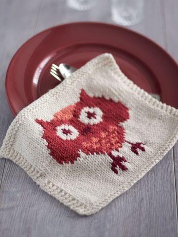 Owl Dishcloth - Free Knitting Pattern