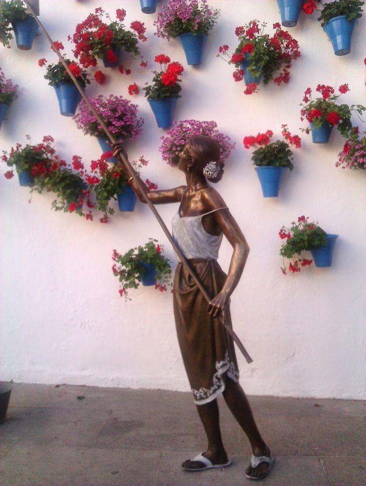 cordobesa+flor.