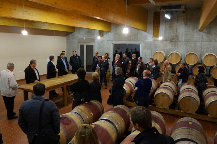 Presentation at the winery