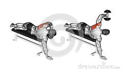 MUSCLE GAINS: Exercising. Lead hand with a dumbbell rear deltoid...