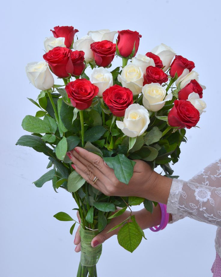 Bonds Of Love: A vibrant combination of fresh #red & #white #Roses #HandBouquet #NotJustFlowers #Roses #SameDayDelivery