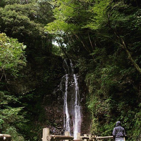 三滝目は中津渓谷よりしばらく久万高原にむけて進んだところの紀念の滝 タイマーかけてはしった #四国の滝 #紀念の滝