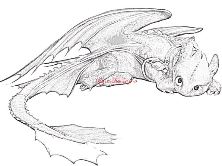 toothless drawing - google search