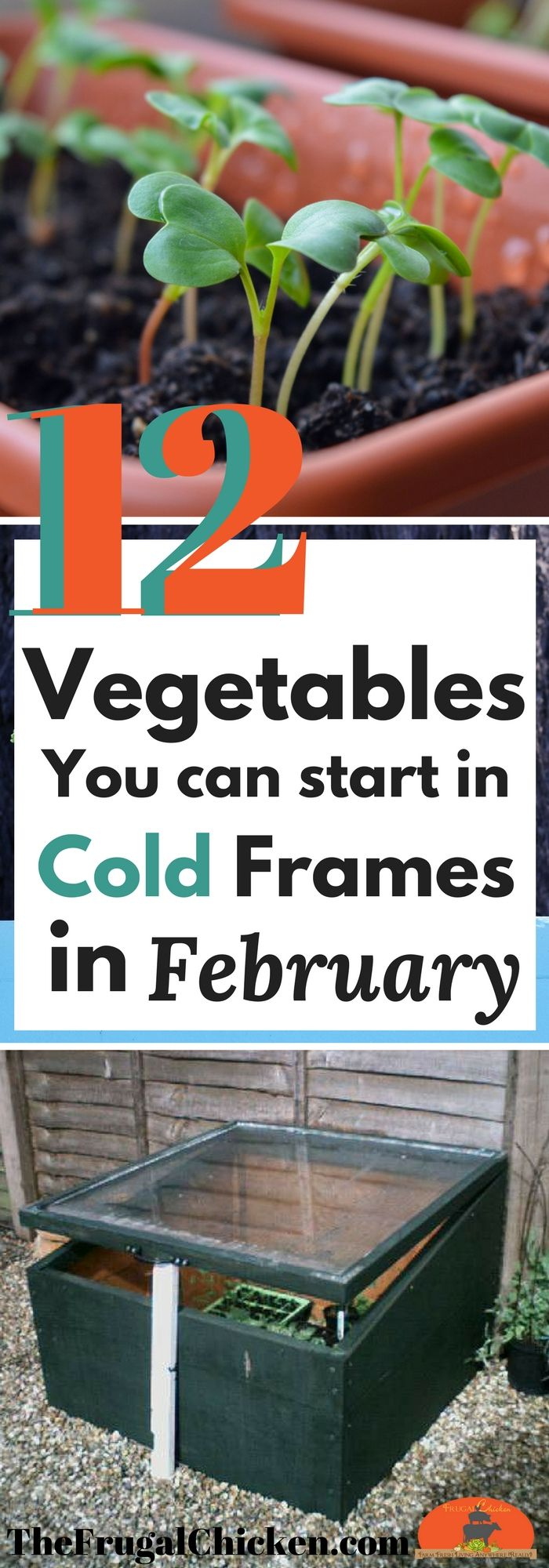 Even if it's still cool outside, there's still plenty you can do in your garden. Here's 12 vegetables you can start right now in cold frames to get a jump on planting season!
