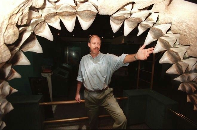 Curator Jeff Seigel stands in the five–-foot mouth of a fossil shark jaw. The shark is called Carcharoles Megalodon and was large enough to swallow a small car. Photograph by Rick Meyer, Los Angeles Times, Getty