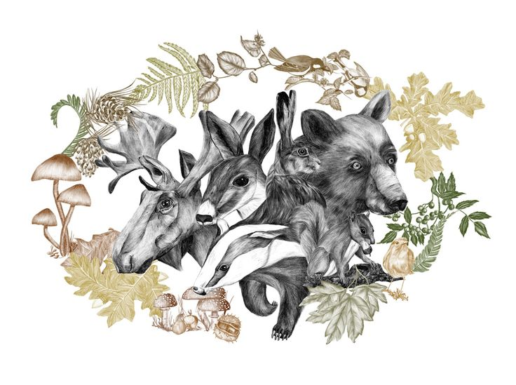 """Flourish in obscurity"" shows how beautiful forest animals are. Even they are rarely seen it is so important to protect them.  #ElementEdenArtSearch"