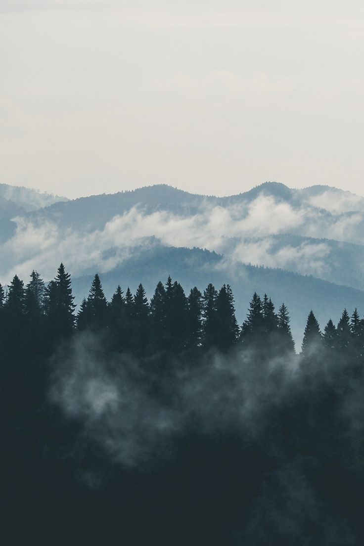 New free photo from Pexels: https://www.pexels.com/photo/forest-mountains-fog-clouds-9754