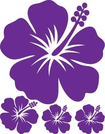 75 best hibiscus flower~°~°~°°°°°°°° images on pinterest