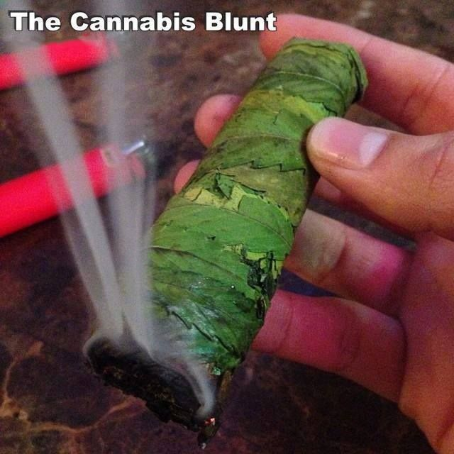 how to start a marijuana lounge in canada