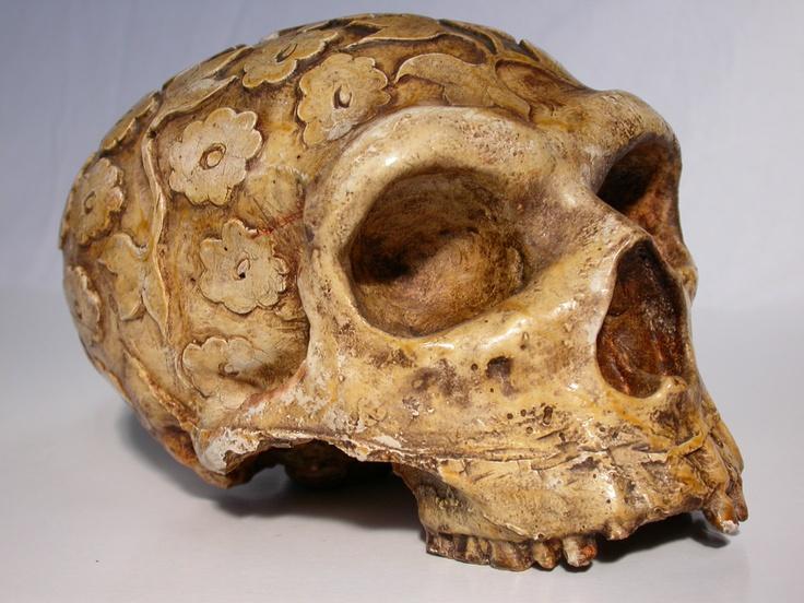 17 best images about carved skulls on pinterest quartz computer science home decor cool science home decor