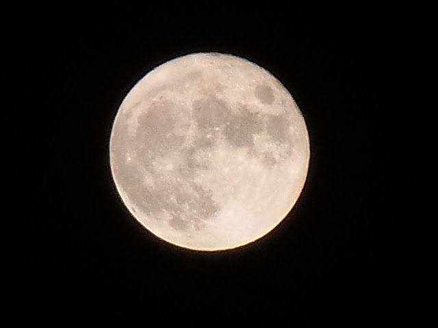 mémorable pleine lune de noël, paraît-il... la dernière en 1977 et  la prochaine en 2034...quatre saisons