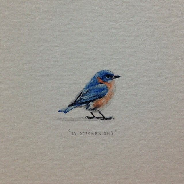 Paintings For Ants Day 297 Somewhere There S A Bluebird Of Tiny Bird Tattoos Bluebird Tattoo Watercolor Bird
