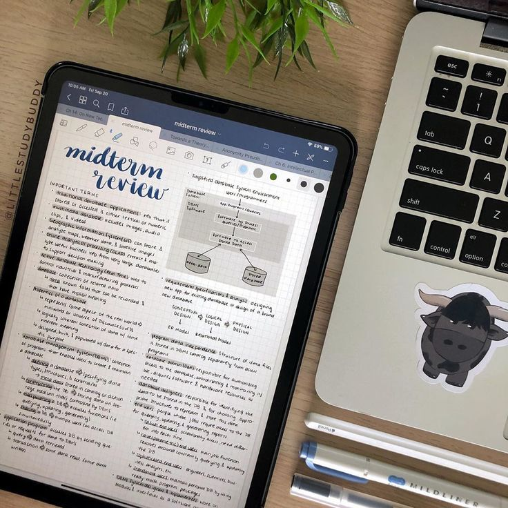 Digital Notes Goodnotes iPad Pro Little Study Buddy