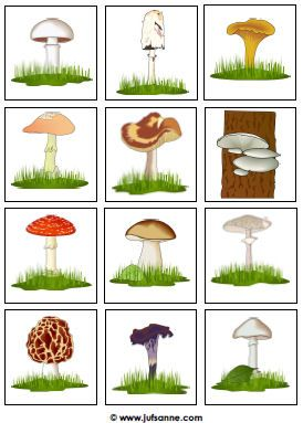 Herfst downloads » Juf Sanne -paddenstoelspel