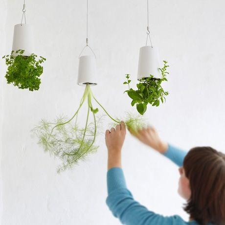 /: Gardens Ideas, Kitchens Window, Sky Planters, Hanging Plants, Hanging Herbs Gardens, Hanging Planters, Boskk Sky, Products, Hanging Gardens