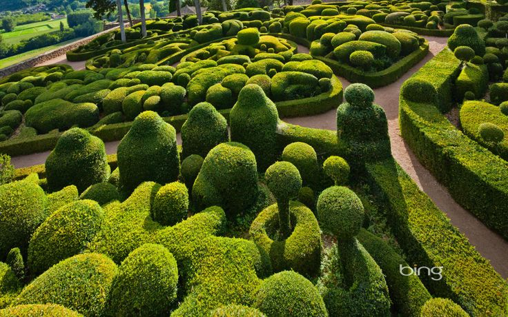 Sculpted boxwoods at the Chateau de Marqueyssac in Vézac, France ...