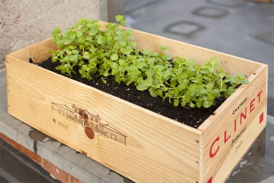 turn a wine crate into a planter
