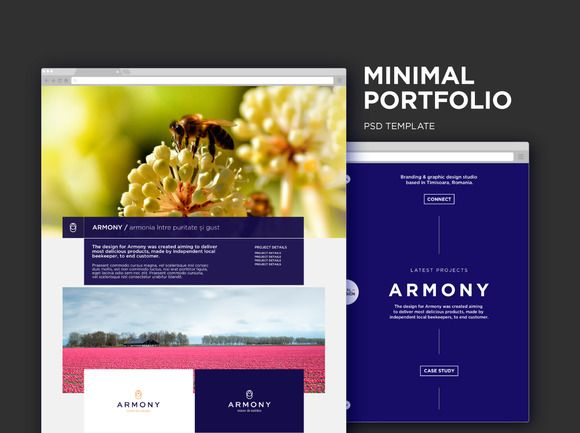 Minimal Portfolio PSD by Digital Infusion on @creativemarket