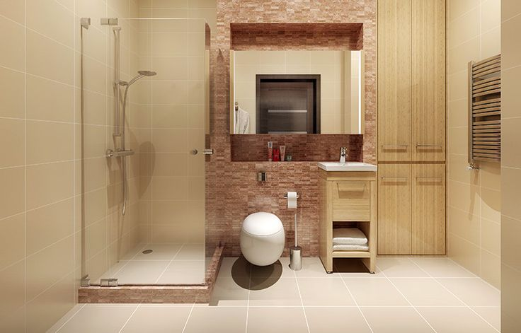 The Toilet – The Most Essential Unmentionable Fixture in Any Bathroom