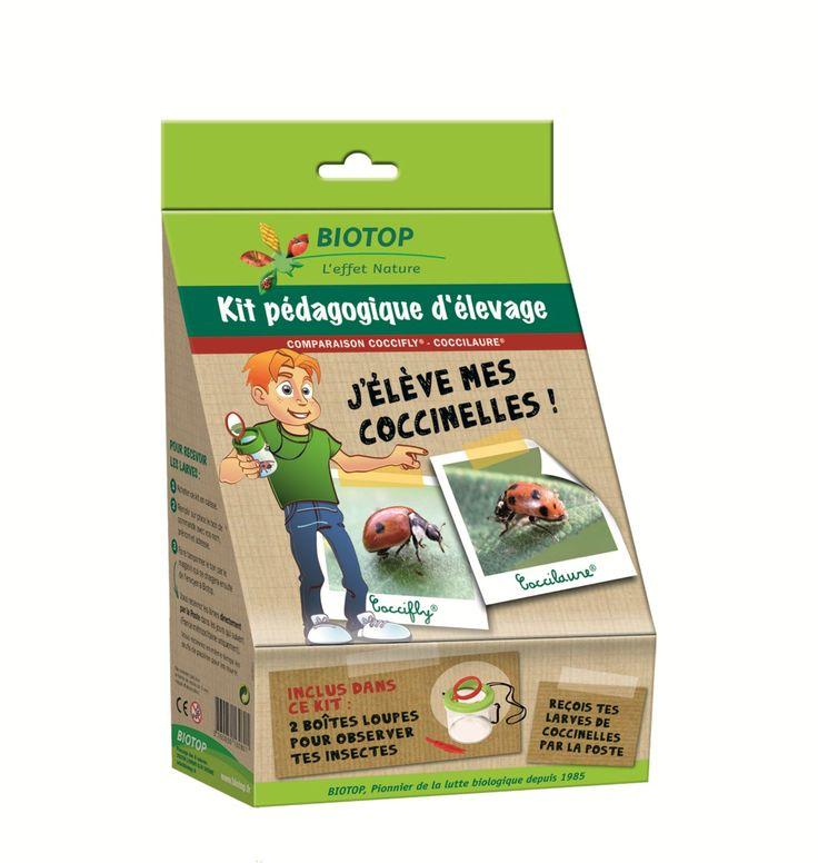 Vente Kit d'élevage , j'élève mes coccinelles Biotop - Achat Nature