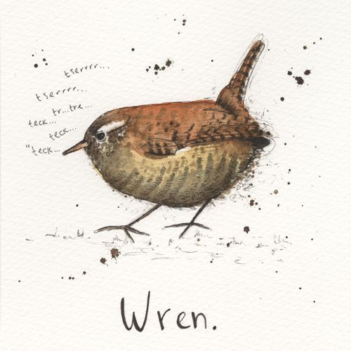 ltd ed garden bird print - wren via Michelle Campbell Art. Click on the image to see more!