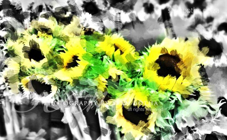 NYC Sunflowers by Sean Botha