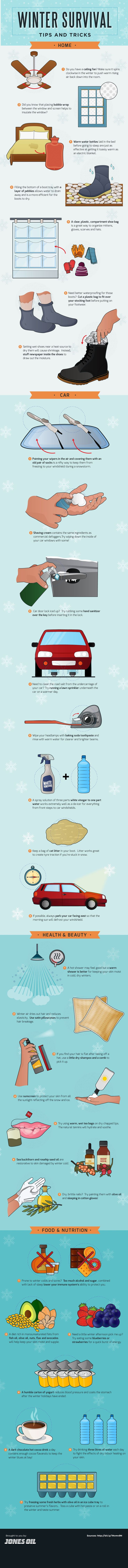 Winter Survival Tips and Tricks #Infographic #Winter #Survival