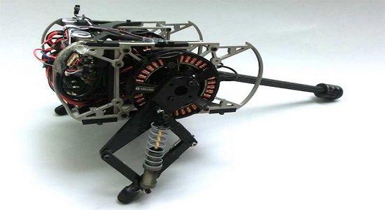 Родителем робота тушканчика стал аспирант университета Пенсильвании, Avik De.