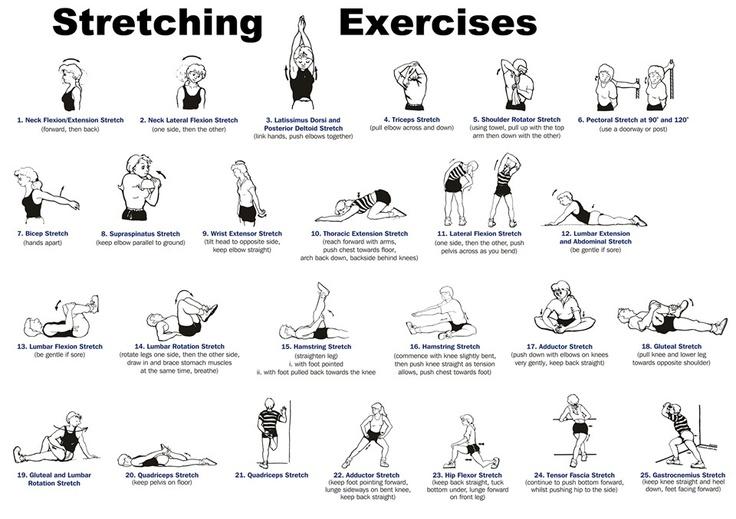 Stretching exercises illustrations