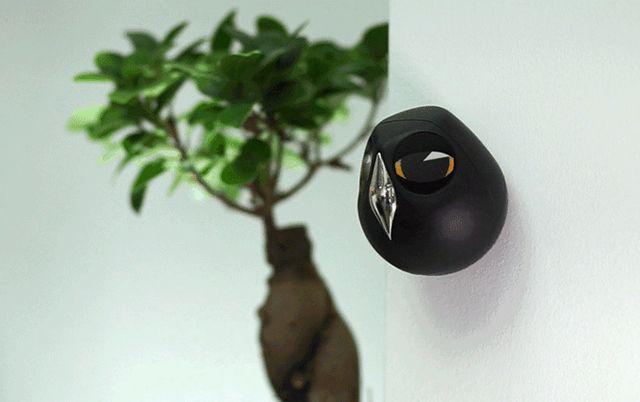 優しく見守る キュートなフクロウ型監視カメラ Ulo フクロウ 影 録音 マイク