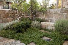 Spirit Level Design for the gardens