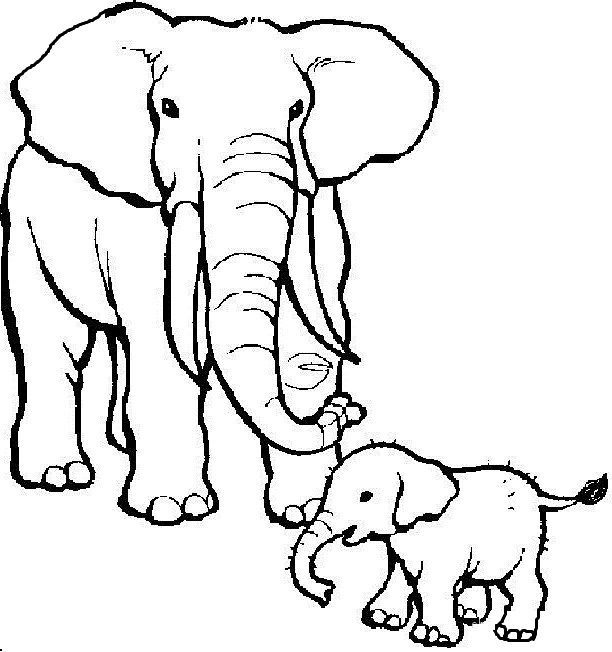 together elephant small son coloring pages for kids printable elephants coloring pages for kids
