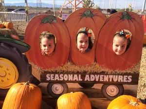 It's Pumpkin Patch Time! | Las Vegas Moms Blog