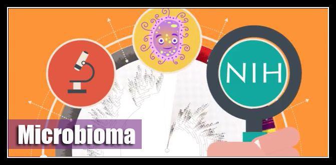 #Microbiología - NUEVO TEMA - Proyecto de #Microbioma ¿Sabías que solo un 10% de las celulas de nuestro cuerpo son humanas? ¿Qué es el microbioma? ...➔  http://akademeia.ufm.edu/home/?curso=biologia-molecular