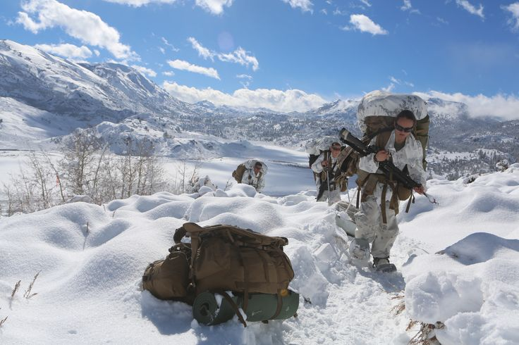 NATO cold weather training norway