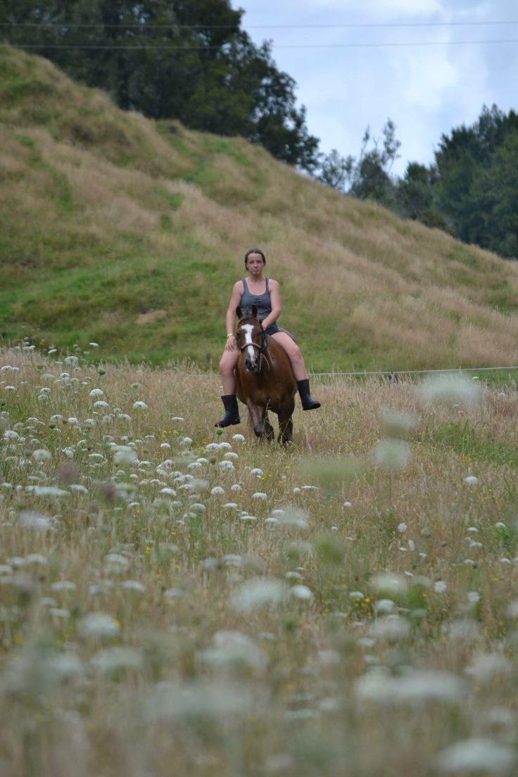 Country Horse Riding