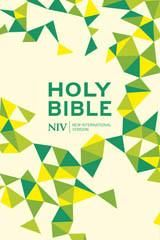 NIV Thinline Lime Soft-tone Bible New International Version