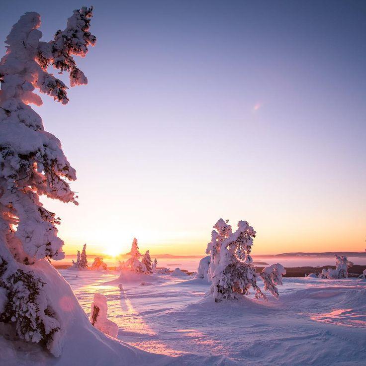 Morning is breaking (Finland) by Lahja Walter (@lahja_walter) on Instagram
