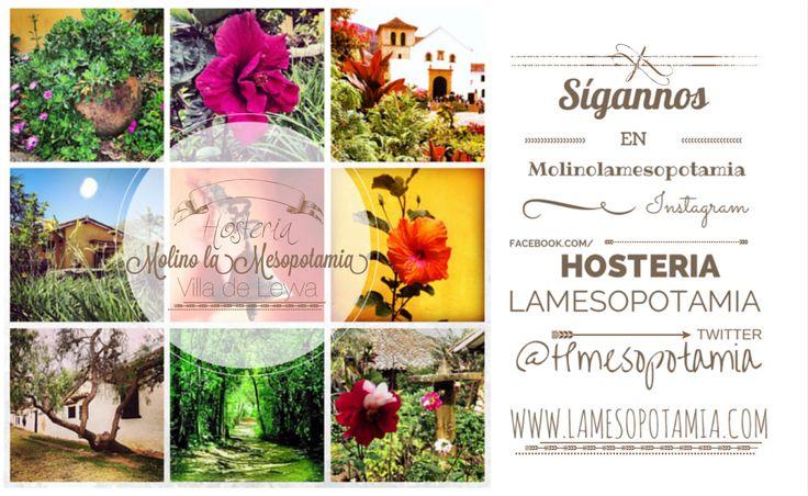 www.lamesopotamia.com