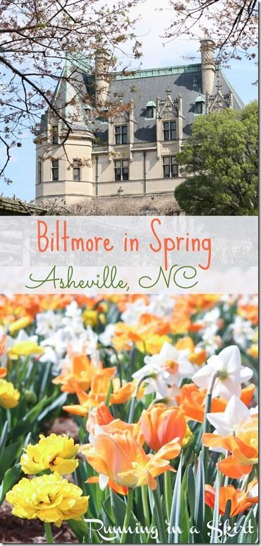 The Biltmore Estate in Spring! Features the gorgeous gardens and tulips.  Tips and tricks for travel to this Asheville, NC mansion from a local. / Running in a Skirt