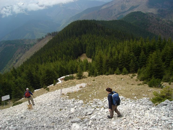 piatra-craiului-national-park-travel-in-romania_thumbnail4.jpg (1000×750)