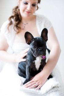 Wedding doggy - Bouledogue français